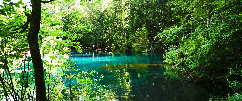 Blau schimmernder See von grünen Bäumen umrandet